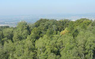 zielone miejsca w Krakowie